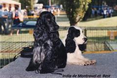 India de Montravel