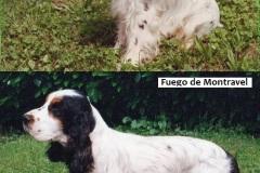 1990  FUEGO de Montravel